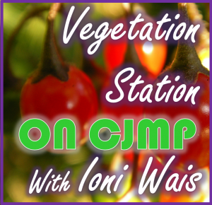 Vegetation Station Returns Sun Feb 21 @ 5PM