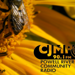 CJMP 90.1 fm Powell River BC Radio gift membership card by Rabideye