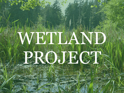 Third Annual Wetland Project