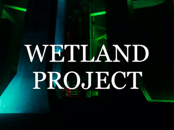 Wetland Project 2020
